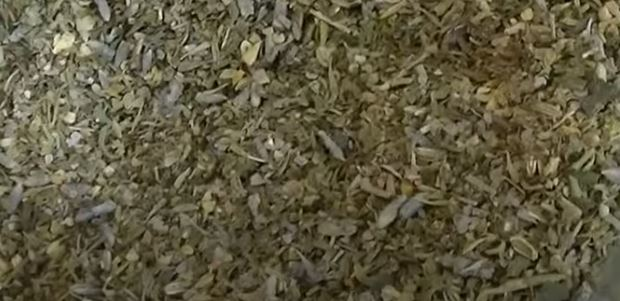 Provencen mausteseos